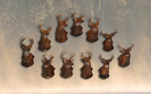 Some of Rick DeStefanis's Big Bucks Taken on Public Land