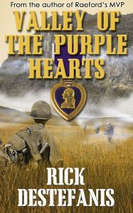 Valley of Purple Hearts book cover soldier looking up at mountain